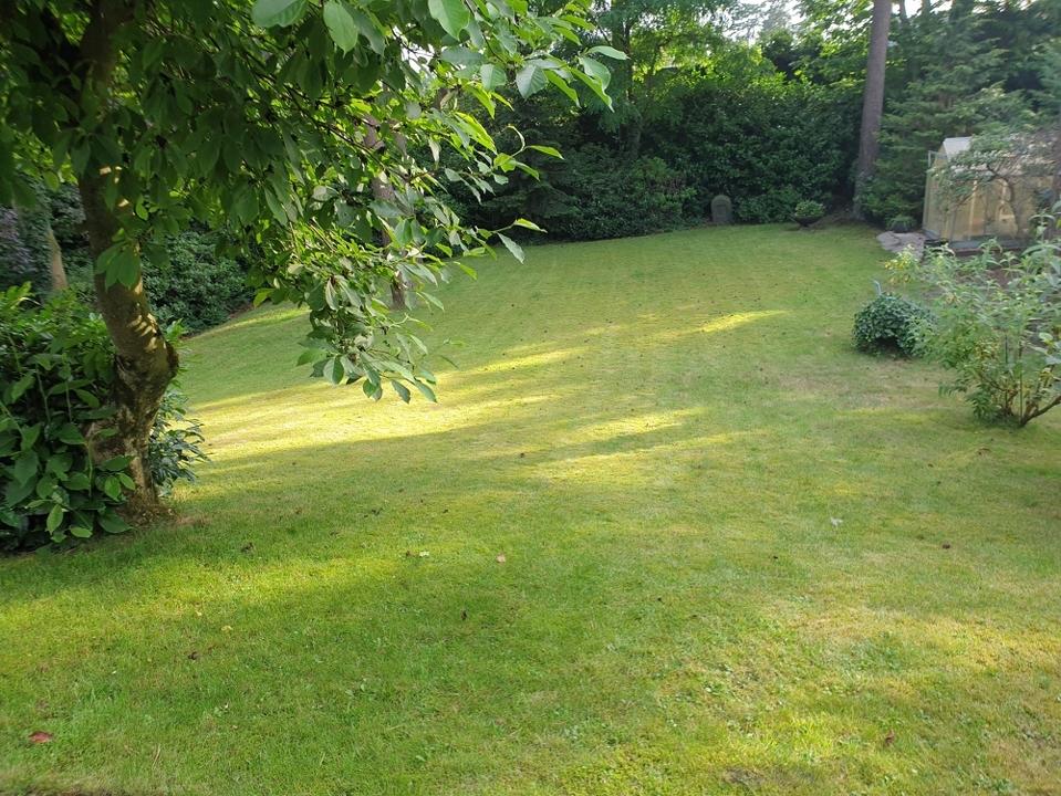 Gartenblick von Terrasse